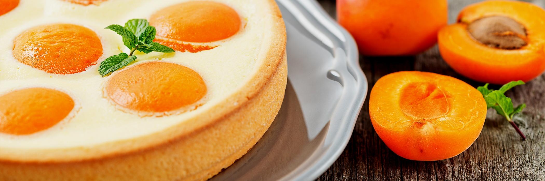 torta cheesecake alle albicocche